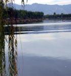 稻香湖上游船垂钓 听鸟儿争鸣