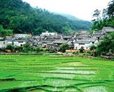 朝最美丽的风景出发! 广州自驾游路线