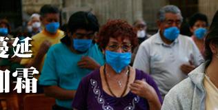 猪流感,甲型H1N1流感,A型流感,猪流感题材股,猪流感受益股