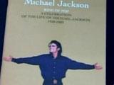 迈克尔杰克逊去世 史蒂夫-旺德现场深情弹唱