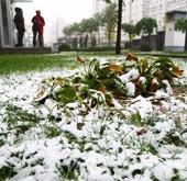 北京迎来今年入冬首场降雪