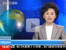 记者描述智利地震现场