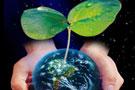 低碳之路如何前行