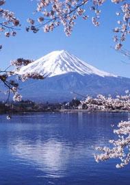 日本 78%生活垃圾焚烧处理