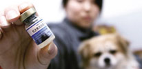 7批次问题疫苗