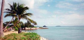 留学新加坡,新加坡留学,飞越重洋