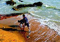 鼓浪屿:老嬉皮的心灵孤岛