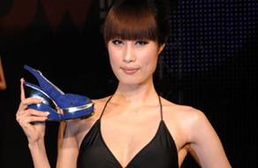第九届中国国际鞋业展览会