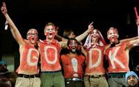 南非世界杯,丹麦VS日本