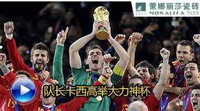 卡西利亚斯,南非世界杯