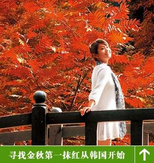 韩国红叶之旅
