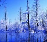 二道白河之冬