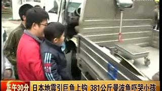 视频:日本地震引381公斤巨鱼上钩 吓哭小孩
