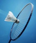 羽毛球交手纪录,2010羽毛球世锦赛