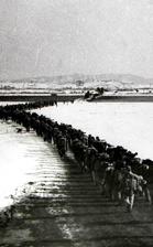 跨过鸭绿江