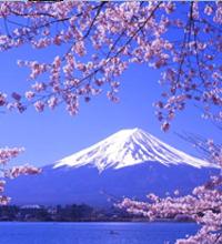 暑假 暑期培训班 辅导班 第三学期 日本