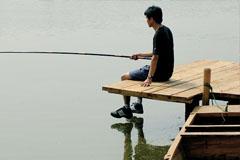 千树农业观光园:采摘垂钓
