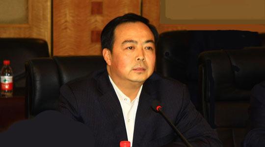 长安汽车股份有限公司副总裁任强