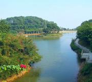 广州帽峰山森林公园