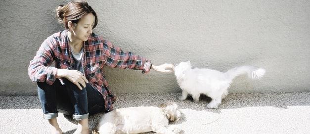 李孝利出版新书讲述与爱犬故事 呼吁保护动物