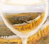 最贫瘠的土地因葡萄酒业变得富有