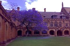 墨尔本大学 澳洲八大名校;澳洲八大;澳洲大学