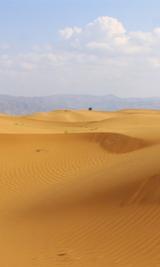 宁夏沙坡头PK迪拜 中国最风情万种的沙漠