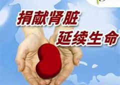 2012年世界肾脏日