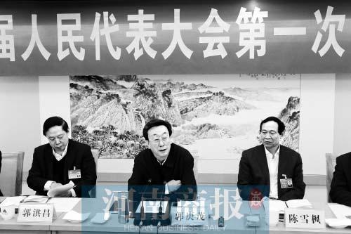 郭庚茂参加省人大代表团分组审议