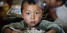 农村学生营养,营养午餐,免费午餐