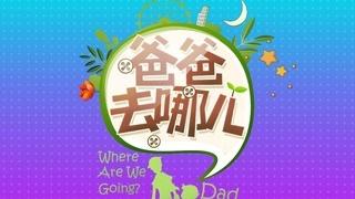 群星《爸爸去哪儿》