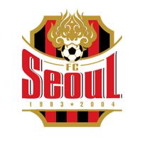 首尔FC队