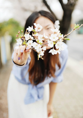 旅途俏佳人:漫步济州岛 徜徉花海赏落樱