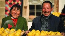 舌尖上的中国第2集:主食的故事