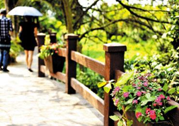 领略博鳌乡村带状公园