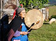 智利 印第安部落