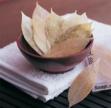 泰国进口 手工树叶皂