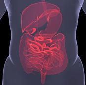 睡眠与肠胃有什么关系?