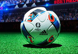 比赛用球:法兰西之翼
