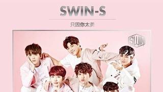 试听:SWIN-S《只因你太美》
