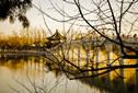 冬拍颐和园