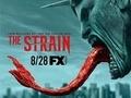血族 第三季直播在线观看