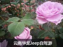 云南华龙Jeep姚安光禄古镇之旅