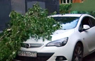莫斯科突遭暴风雨致13死