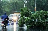 台风登陆:深圳学校停课
