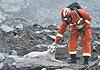 茂县山体垮塌救援最艰难的36小时