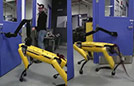 机器狗逃脱受阻反抗人类