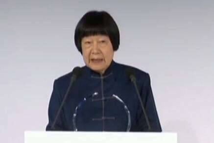中国老人发言征服全场