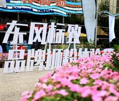 东风标致品牌狮粉体验营成都站