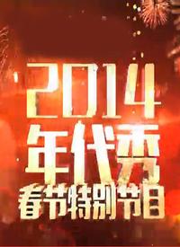 深圳卫视马年春晚 2014